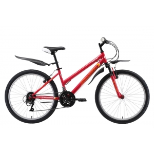 Подростковый велосипед Challenger Cosmic Girl 24 (2019)