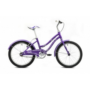 Детский велосипед Cronus Best Mate 20 RF girl (2016)
