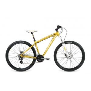 Горный велосипед Format 7743 (2016)