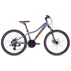 Подростковый велосипед Giant XtC Jr 1 Disc 24 (2019)