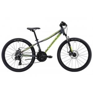 Подростковый велосипед Silverback Skid 24D (2019)