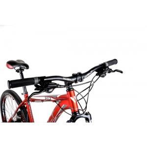 Горный велосипед Welt Ridge 1.0 HD (2016)