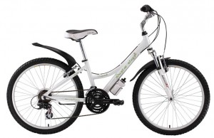 Велосипед Alpine Bike 550SL (2013)