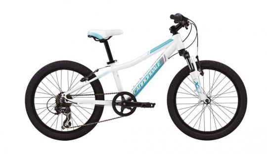 Детский велосипед Cannondale Trail 20 Girl's (2015)