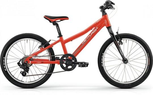 Детский велосипед Centurion R'Bock Team.20 (2016)
