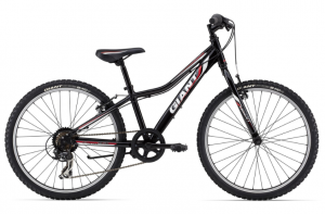 Подростковый велосипед Giant Revel JR Lite 24 Boys (2014)