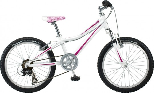 Детский велосипед Giant Areva 2 20