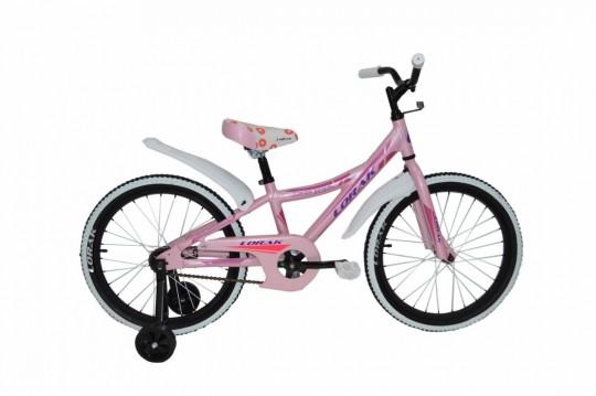 Велосипед детский Lorak Junior 201 Girl (2016)