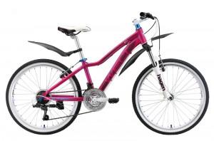 Подростковый велосипед Welt Edelweiss 24 (2019)