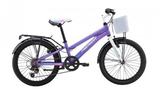 Велосипед детский Merida Chica J20 6 spd (2016)
